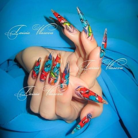 Дизайн длинных нарощенных ногтей (стилет) с яркой художественной росписью акриловыми красками - гибискусы и птицы